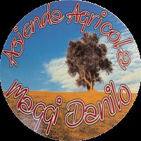 Agricola Maggi